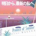 "Tsudio Studio ft. HALLCA - PROMISE OF SUMMER  (12"" analog vinyl record アナログレコード)"