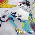 坂口恭平- アポロン (LP)