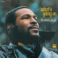 MARVIN GAYE / What's Going On(Original Detroit Mix)