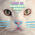 Best of HABANEKO POSSE2