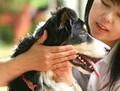 健康の源♪愛犬に優しいお口ケア
