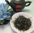 緑茶 信陽毛尖 10g