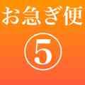 【オプション】お急ぎ便5‼︎