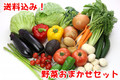 【送料込み】旬の野菜おまかせセット(約10種)