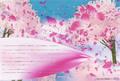 ポストカード「H2 artbox ~踊桜~」