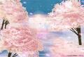 ポストカード「H2 artbox ~朝桜~」