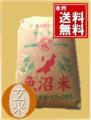 30年度魚沼産コシヒカリ玄米25kg1等【玄米色彩選別済み】従来型
