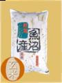 元年度魚沼産コシヒカリ玄米5kg【玄米色彩選別済み】従来型