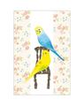 ポストカード(椅子とセキセイインコ)