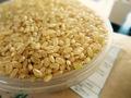 (無農薬)長野県東御市 栽培期間中農薬不使用 りんご米コシヒカリ 30kg