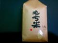 新潟県新潟市 わたぼうし もち米(白米)5kg