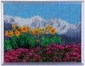 スキルギャラリー G673 雪山の春