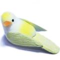 小鳥(黄色)