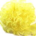 テトロンフリルレース(黄色)