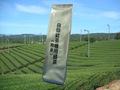 給茶器用緑茶(煎茶)200g