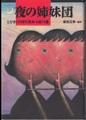夜の姉妹団 とびきりの現代英米小説14篇