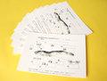 に)「煮干しの解剖」用台紙40枚セット(30037)