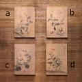草虫図ノート(小)
