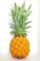 宮古島産パイナップル(ボゴール)2.0kg(2~4個入り)