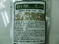 初草 ミニ 1kg           小分け500g×2