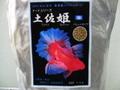土佐姫【D】     成魚用1kg