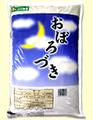 金王冠北海道産おぼろづき5kg