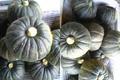 北海道赤井川村産 ベータカロチン3倍の訳あり「坊ちゃんかぼちゃ」5kg(ちょっと大きめ)