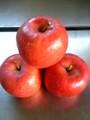 余市産りんご「昂林(こうりん」5kg詰 14~18玉