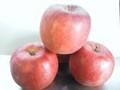 余市産りんご「新世界」16-20玉