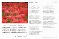 ポストカードセット Vol.7 「旅」