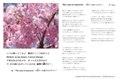 ポストカードセット Vol.3 「応援歌」
