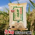 令和1年産氷温熟成特別栽培米奥日野こしひかり5㎏(5㎏×1袋)