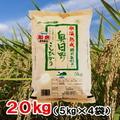 【送料無料】令和1年産氷温熟成特別栽培米奥日野こしひかり20㎏(5㎏×4袋)