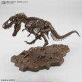 Imaginary Skeleton ティラノサウルス