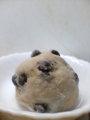 本豆餅(12個入/箱)