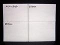 ノーカットタックシールA4サイズ 100枚パック【送料無料】