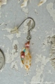 Tiny Mitra mitra in shell & Turquoise Pierce No,4