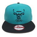 【Chicago Bulls】Teal Black
