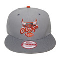 【Chicago Bulls】Gray Burnt Orange