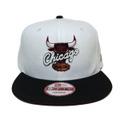 【Chicago Bulls】Carmine