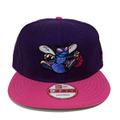 【Charlotte Hornets】Purple Pink