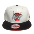 【Chicago Bulls】White Infrared