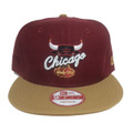 【Chicago Bulls】Cigar
