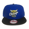 【Chicago Bulls】Laney