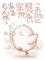 [C32]この羽に