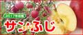 藤原果樹園のりんご「ふじ」