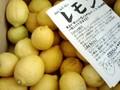 無茶々園の皮まで安心レモン1kg