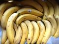 メキシコ産有機バナナ