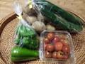 【ご予約品】佃さんの自然栽培野菜セット(4~5P)1400円