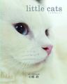 「little cats」 リトルキャット 写真集